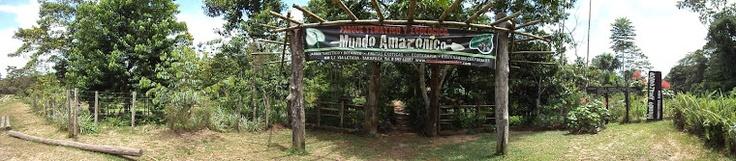 CENTRO ETNOBOTÁNICO DEL AMAZONAS  El Parque Ecológico Mundo Amazónico es un centro etnobotánico de interpretación ambiental. Cuenta con colecciones de plantas endémicas, frutales Amazónicos, escenarios culturales interactivos y el acuario Etuena.