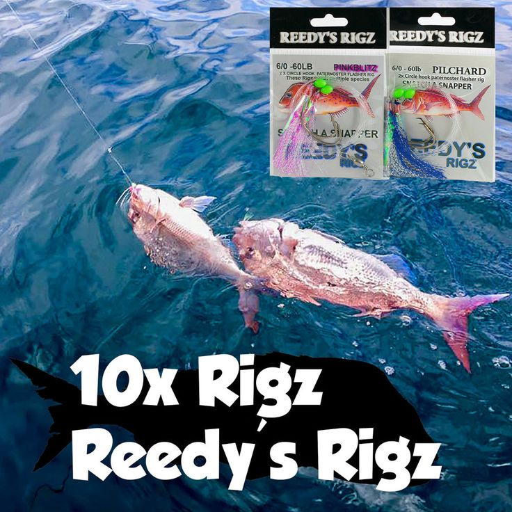 Snapper Snatcher Fishing Rigs Tackle Online At Great Price's Picture Speaks For it's Self .. Bag a Red This Season