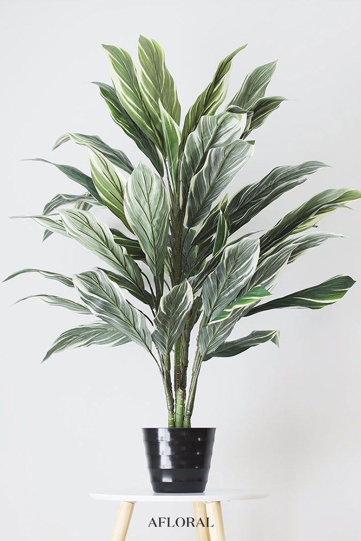 Fake Potted Cordyline Palm Floor House Plant 40 House Plants