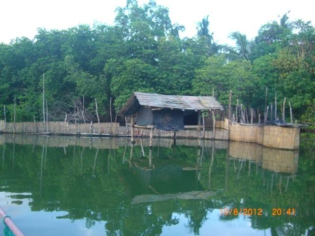 River Cruise on Madhu Ganga 6