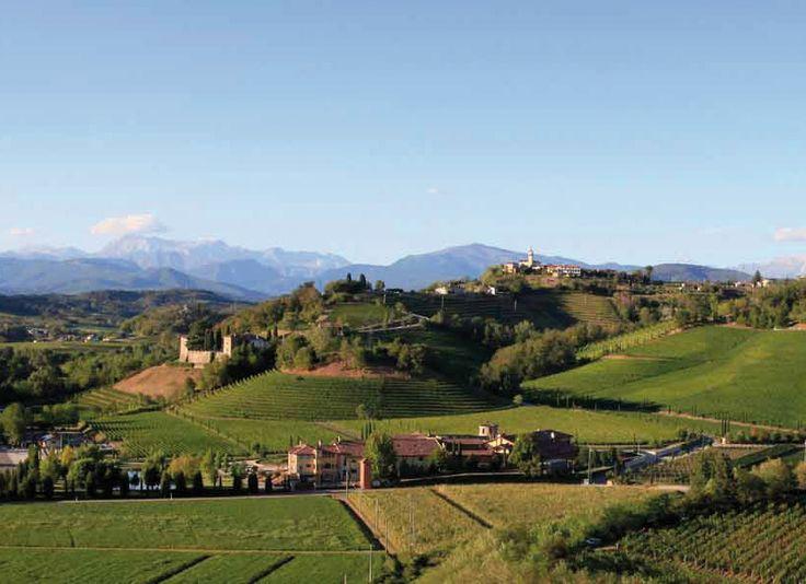 Dolegna del Collio: strade di vino e di sapori