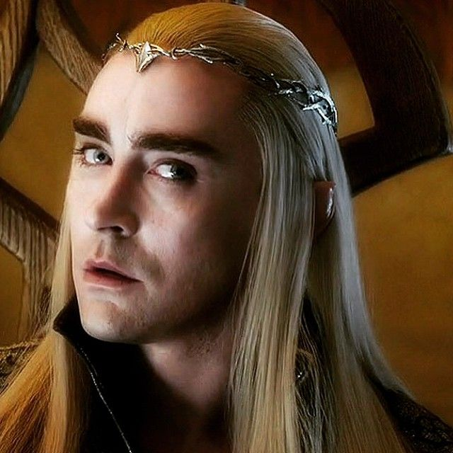 dccfcec747e936b4790316195bb19449--lee-pace-thranduil-elf-king.jpg