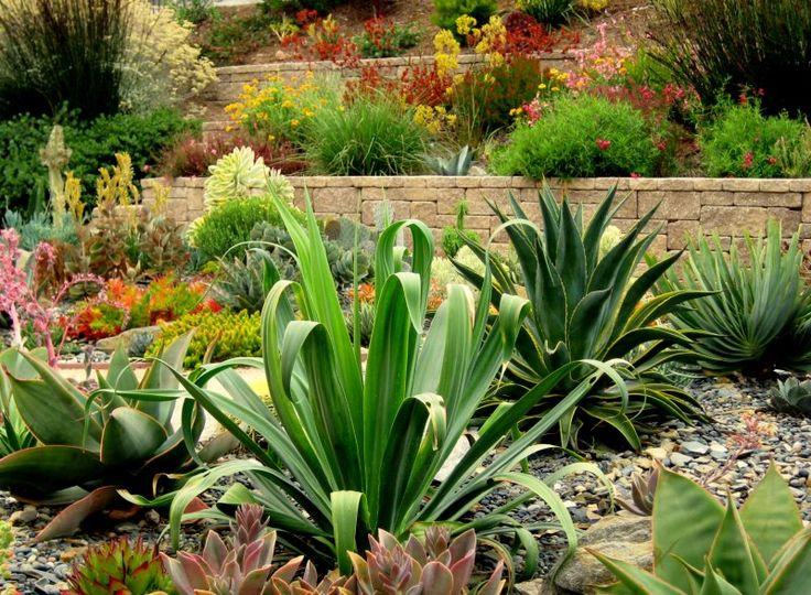 181 best jardim com rio seco jardim com pedras jardim com