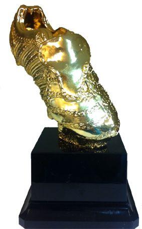 Gouden schoen. 30cm Replica van de gouden schoen voor de beste speler van de eredivisie. Gegraveerd met eigen tekst en logo.  € 77,50-