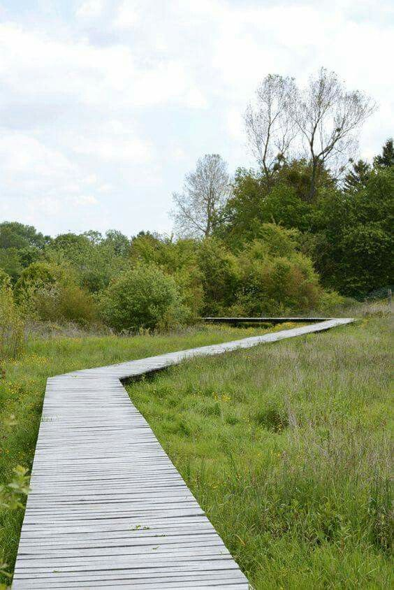 Wet meadows and source of the river Norges by Territoires.  -The LA Team  www.landarchs.com