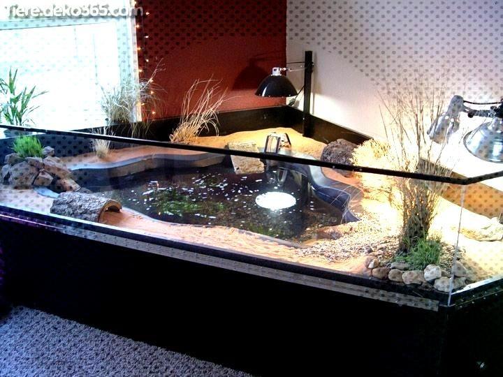 Unglaubliche Lebensraum Turtle Tank Cage Pet Unglaubliche Pet Turtle Tank Lebensraum Cage Unglaubliche Pet Turtl In 2020 Indoor Pond Turtle Habitat Pond Design