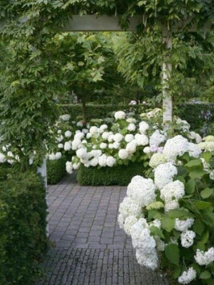 garden-paths_21.jpg