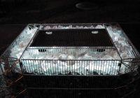 Gabionen Grill mit LED und Glasschotter.  http://www.triooo.eu/produkte/gabionen-grill.html