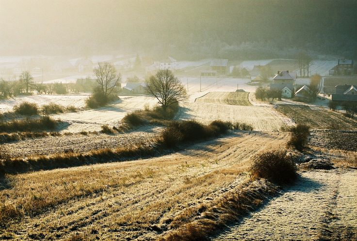 https://flic.kr/p/RPCeMi | Mroźny poranek / Frosty morning