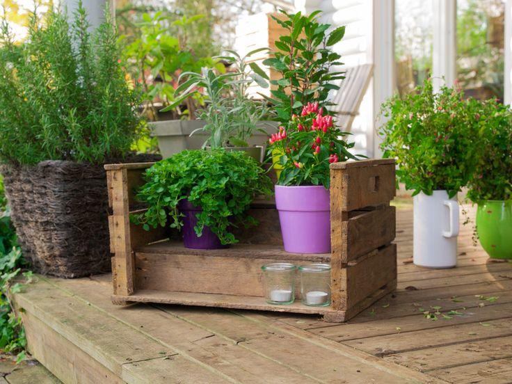 Kisten & Boxen - schöne Pflanztreppe mit 3 Stufen - Obstkiste - ein Designerstück von DieStadtgaertner bei DaWanda