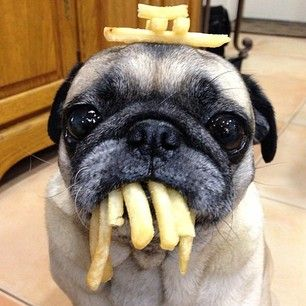 So even though not everyone understands your love affair with French fries… | 18 Struggles Of Everyone Who Is Constantly Hungry
