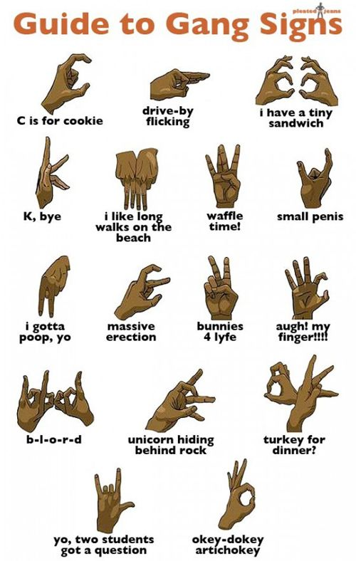 Gang Signs--brilliant guide for beginners!
