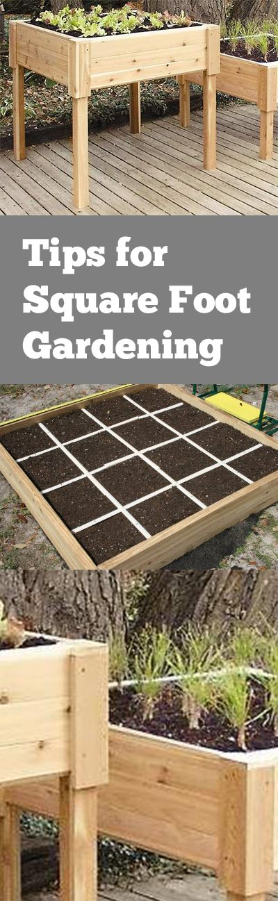 Tips for Square Foot Gardening. Great ideas for square foot gardening in your…