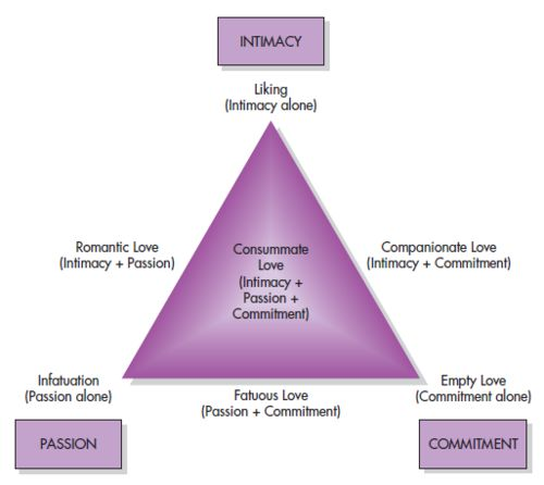 sternberg�s triangular theory of love p s y c h o l o