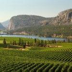 Okanagan Valley named world's 2nd best wine region to visit