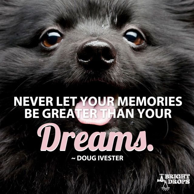 """""""Never let your memories be greater than your dreams."""" ~Doug Ivester"""