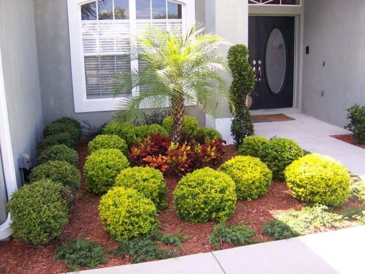 Flower Garden Ideas For Small Yards landscape on a budget florida | front yard curb appeal landscaping