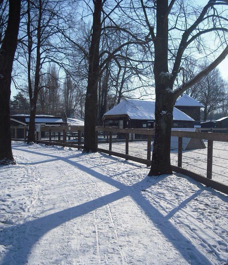 Kinderboerderij, Vestingwallen, Naarden.