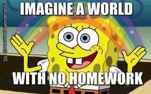 should student have homework