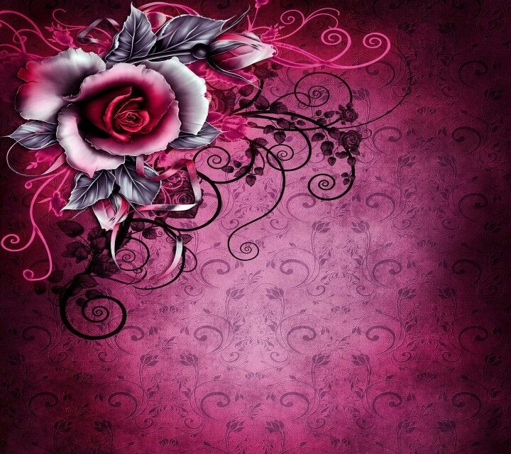 Wallpaper Black Pink: 17 Best Images About Cards And Frame S On Pinterest