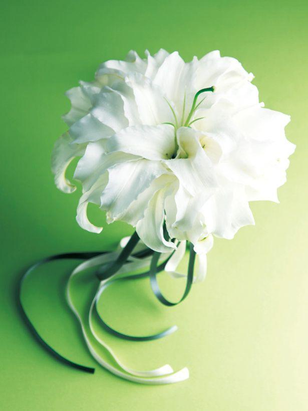花びらを一枚一枚離し、その花びらを重ねることで大輪の花を作るメリアブーケ。個性的でモダンなブーケのまとめ一覧です♡