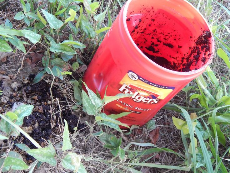 Thoughts from Frank and Fern: Fire Ants  Coffee Grounds
