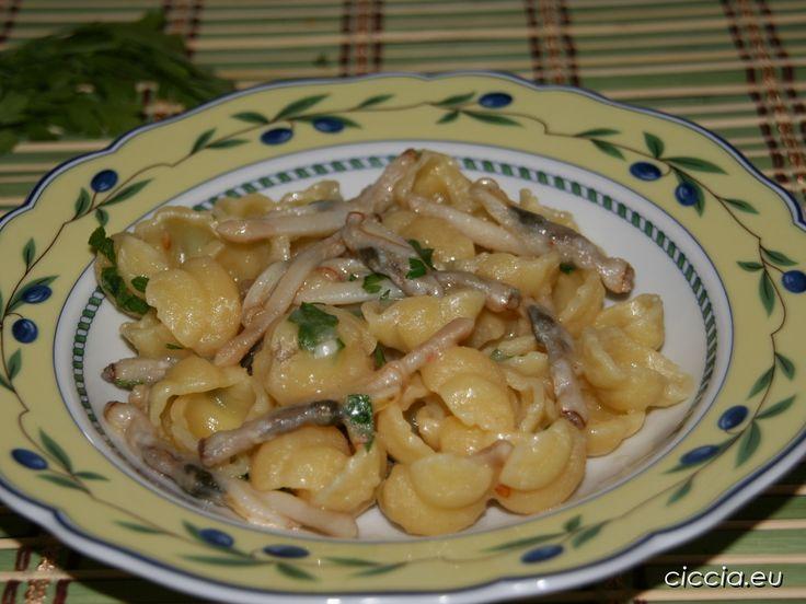 La pasta con crema di patate e cannolicchi è un primo piatto dal gusto delicato, ma allo stesso tempo molto saporito.