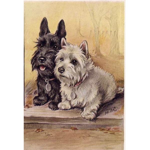 Scottie & Westie Two Wee Aberdonians Scottish