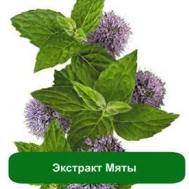Экстракт Мяты - 100 мл. в магазине Мыло-опт.com.ua. Тел: (097)829-49-36. Доставка по всей Украине.
