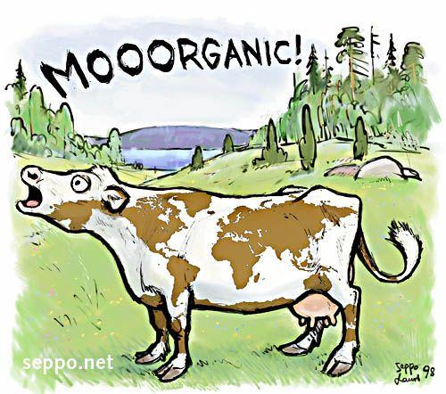 Global Organic Cow, keywords: organic farming agriculture ...
