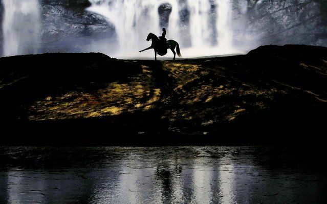 """A horse and rider perform during a """"sneak peek"""" performance of Cavalia's show """"Odysseo"""" in Somerville, Massachusetts, on August 6, 2013 The show, which features 63 horses and 47 human artists, acrobats, riders and performers, opens its Boston-area performances August 7. (Photo by Brian Snyder/Reuters)"""