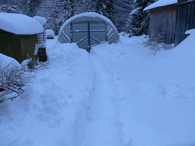 Ihan kauhiasti lunta! - Verkkokauppa - Puutarha Auringontähti
