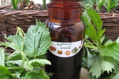 Jak si vyrobit domácí bylinné extrakty