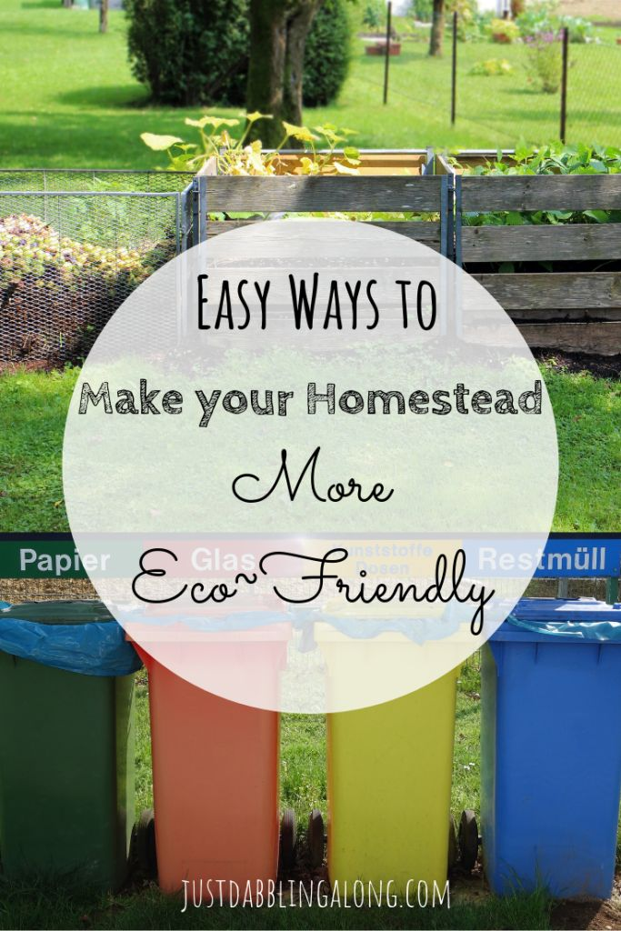 Easy Ways to Make Your Homestead More Eco Friendly – Best of Just Dabbling Along