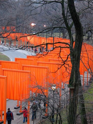 More Gates. Christo & Jeanne Claude
