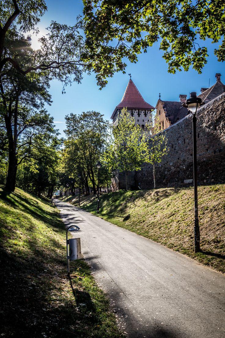Defender Medieval Fortress   Sibiu, Romania
