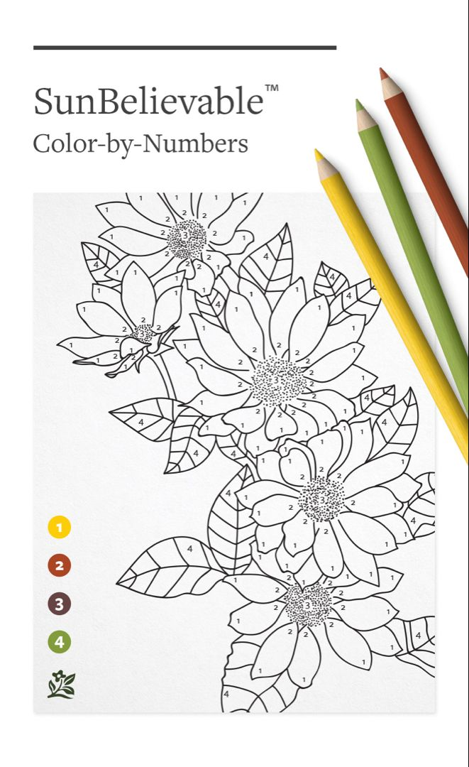 Sunbelievable Coloring Pattern Coloring Pages Paint By Number Coloring Pages