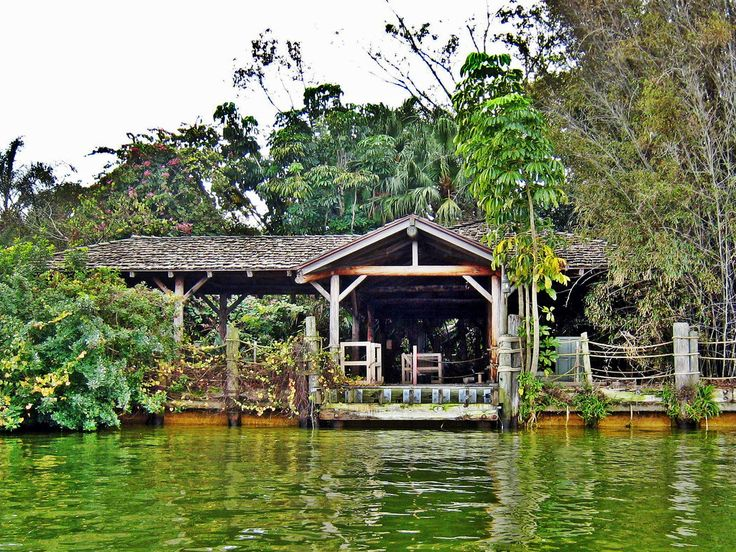 Disney's Discovery Island | 19 Of The Most Abandoned And Haunted Places On Earth