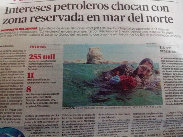 EL DIA DIA DE LA INFORMATICA: Reserva en Peligró