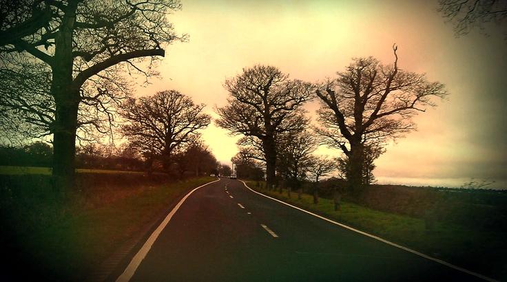 Hadley Road, towards Hadley Wood.