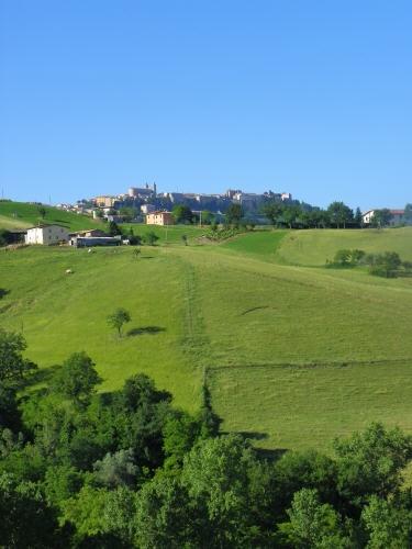 High summer, #Camerino #Le Marche #italian landscape