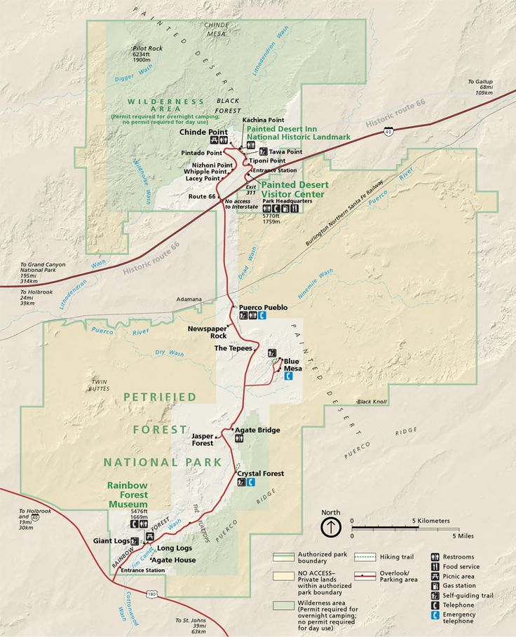 Petrified-Forest-National-Park-map