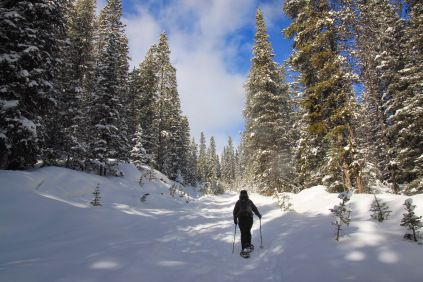 On Friday I checked the weather forecast for Saturday's snowshoe, -15C without wind chill. I was less then thrilled but still excited to get out to the mountains. I don't love the cold …