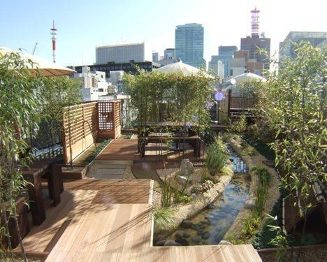 A lovely rooftop garden in Tokyo