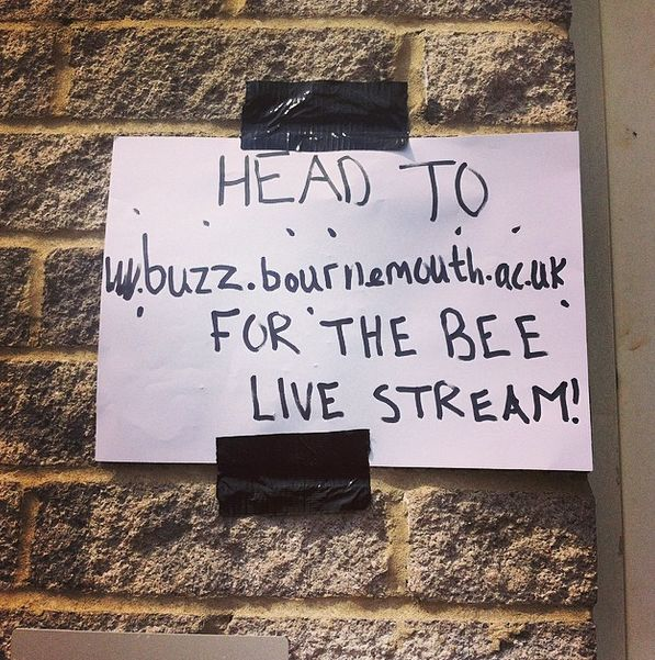 Our DIY poster for the bee cam. We have an expert coming in at 4pm so make sure you are watching LIVE at http://buzz.bournemouth.ac.uk/live-video-bournemouth-university-bee-cam/ #bournemouth #buzz #news