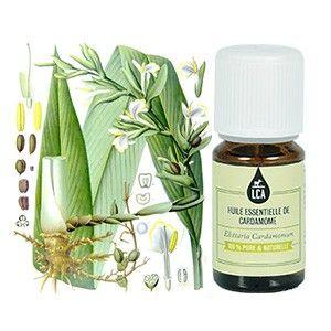 L'HUILE ESSENTIELLE DE CARDAMOME : L'huile essentielle de #cardamome est #aphrodisiaque. Elle favorise la #digestion et agit sur le système respiratoire. La cardamome est utilisée comme tonifiante et stimulante. L'huile essentielle de cardamome peut être également utilisée en olfactothérapie et en cuisine. Lire plus sur http://www.lca-aroma.com/les-epicees/101-huile-essentielle-de-cardamome-sauvage.html