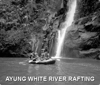Bali Adventure Specialist for bali rafting, bali white water rafting, bali trekking, bali trails, cycling in bali, 4wd, team building