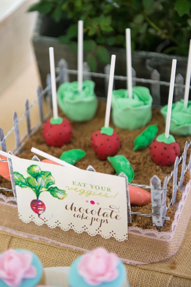 Chocolate cake pops at a Peter Rabbit birthday party! See more party planning ideas at CatchMyParty.com!