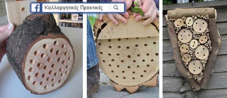Κάντε Μερικές Τρύπες σε ένα Κομμάτι Ξύλου & Κρεμάστε το στον Κήπο Σας για να Αυξήσετε την Παραγωγή των Καλλιεργειών Σας - Τρύπες σε κορμούς