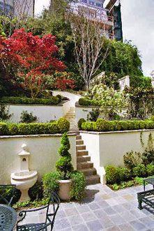 Tiered hillside garden.